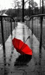 Red Umbrella Lwp screenshot 1/3