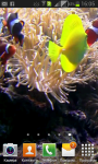 Fish underwater video LiveWP screenshot 1/4