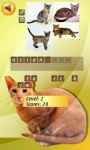 Cats Quiz  screenshot 3/4