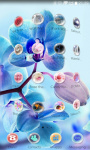 Blossom Orchid Theme screenshot 4/5