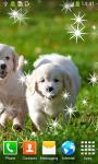 Top Puppies Live Wallpapers screenshot 3/6