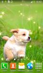 Top Puppies Live Wallpapers screenshot 4/6