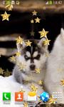 Top Puppies Live Wallpapers screenshot 5/6