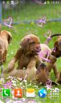 Top Puppies Live Wallpapers screenshot 6/6