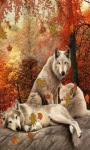 Forest Wolves Live Wallpaper screenshot 2/3