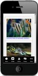 Freshwater Aquarium Fish 2 screenshot 3/4