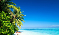 Beautiful Tropical Places for Vacation Wallpaper screenshot 3/6
