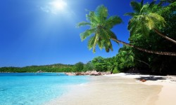 Beautiful Tropical Places for Vacation Wallpaper screenshot 4/6