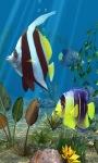 Fish View Live Wallpaper screenshot 2/3