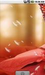 Sexy Butterfly Live Wallpaper screenshot 3/4