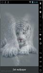 White Bengal Tiger Live Wallpaper screenshot 2/3