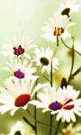 Butterfly Magic Live Wallpaper screenshot 4/5
