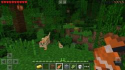 Minecraft Pocket Edition 3 hd screenshot 1/3