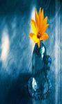3D Flowers Wallpapers screenshot 3/4