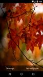 Beautiful Autumn Live Wallpaper HD screenshot 3/6