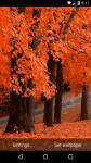 Beautiful Autumn Live Wallpaper HD screenshot 5/6