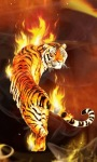 Tiger Fire Live Wallpaper screenshot 1/3