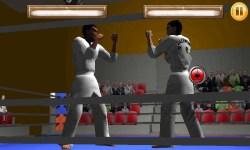 Taekwando Fight screenshot 1/5