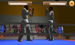 Taekwando Fight screenshot 2/5