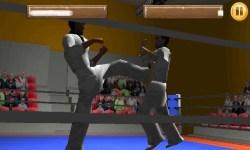 Taekwando Fight screenshot 5/5