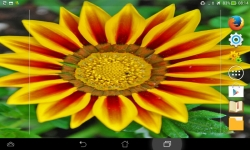 Impressive Flowers Live screenshot 1/6