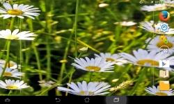 Impressive Flowers Live screenshot 3/6