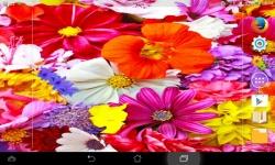 Impressive Flowers Live screenshot 4/6