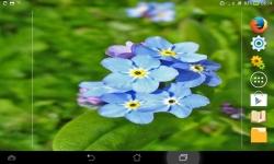 Impressive Flowers Live screenshot 5/6