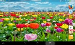 Impressive Flowers Live screenshot 6/6
