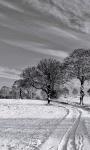 Amazing Winter weather Wallpaper screenshot 2/6