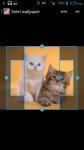 Lol Cats Wallpaper screenshot 3/4