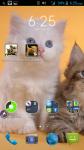 Lol Cats Wallpaper screenshot 4/4