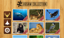Jigsaw Collection screenshot 1/6
