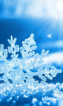 Snow Flake Live Wallpaper screenshot 1/3