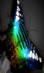 Neon Butterfly Touch Live Wallpaper screenshot 4/4