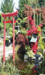 Japanese Zen Garden Live Wallpaper Free screenshot 3/5