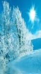 Beautiful Winter Wallpaper Pic screenshot 1/6