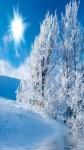 Beautiful Winter Wallpaper Pic screenshot 4/6
