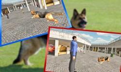 Police Dog Ben Crime Chase screenshot 4/4
