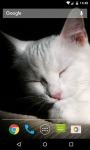 Cat Live Wallpaper HD screenshot 3/5