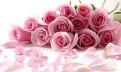Pink flower wallpaper  pic screenshot 4/4