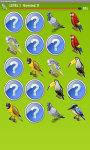 Birds Memory Game Free screenshot 3/5