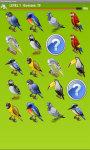 Birds Memory Game Free screenshot 4/5