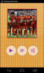 Belgium Worldcup Picture Puzzle screenshot 2/6