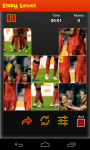 Belgium Worldcup Picture Puzzle screenshot 4/6