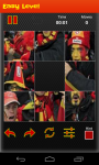 Belgium Worldcup Picture Puzzle screenshot 6/6