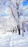 Winter Wonderland Live Wallpaper screenshot 1/3