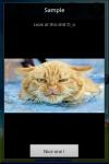 PandoraBox MMS screenshot 2/5