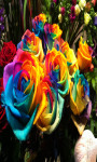 Rainbow Roses Rainbow Flowers Live Wallpaper screenshot 2/5