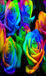Rainbow Roses Rainbow Flowers Live Wallpaper screenshot 4/5